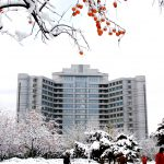 Central Teaching Building in Winter